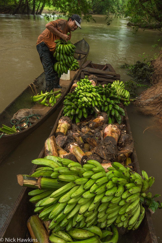 Rama man loads canoe with bananas