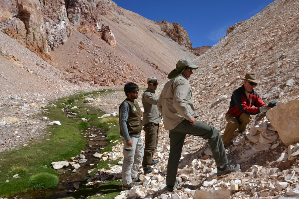 Placing camera traps with rangers from Nevado Tres Cruces National park and GWC's Jim Sanderson in Chile. (Photo by C. Napolitano)