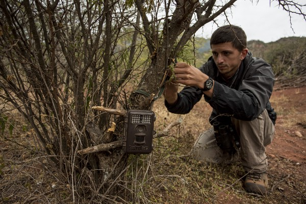GWC's Chris Jordan sets a camera trap on the side of a trail in Argentina's Condor Valley. (Photo by Robin Moore)