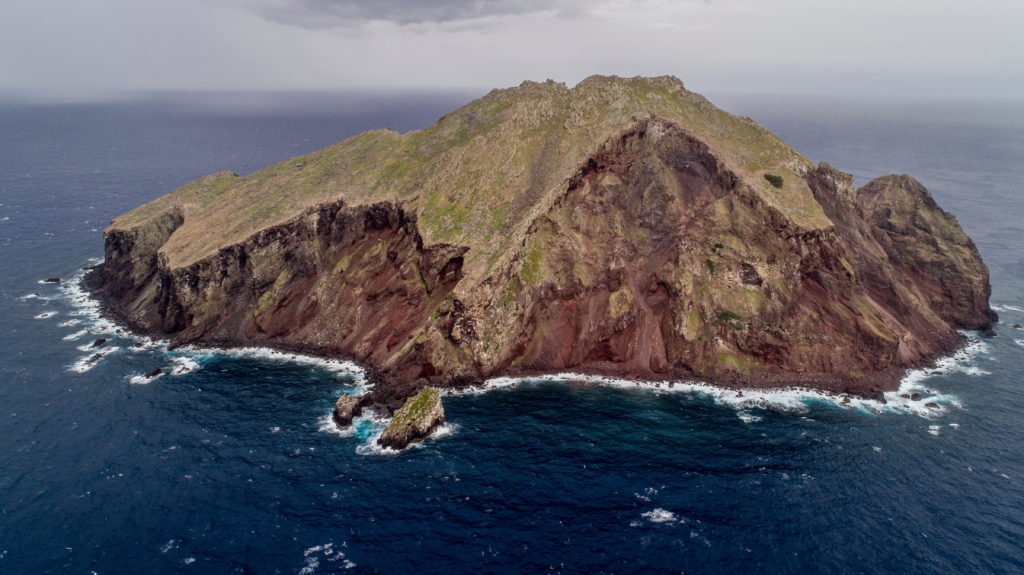 Redonda Island as it transforms from a lunar landscape to a lush green island teeming with life. (Photo by Robin Moore, Global Wildlife Conservation)