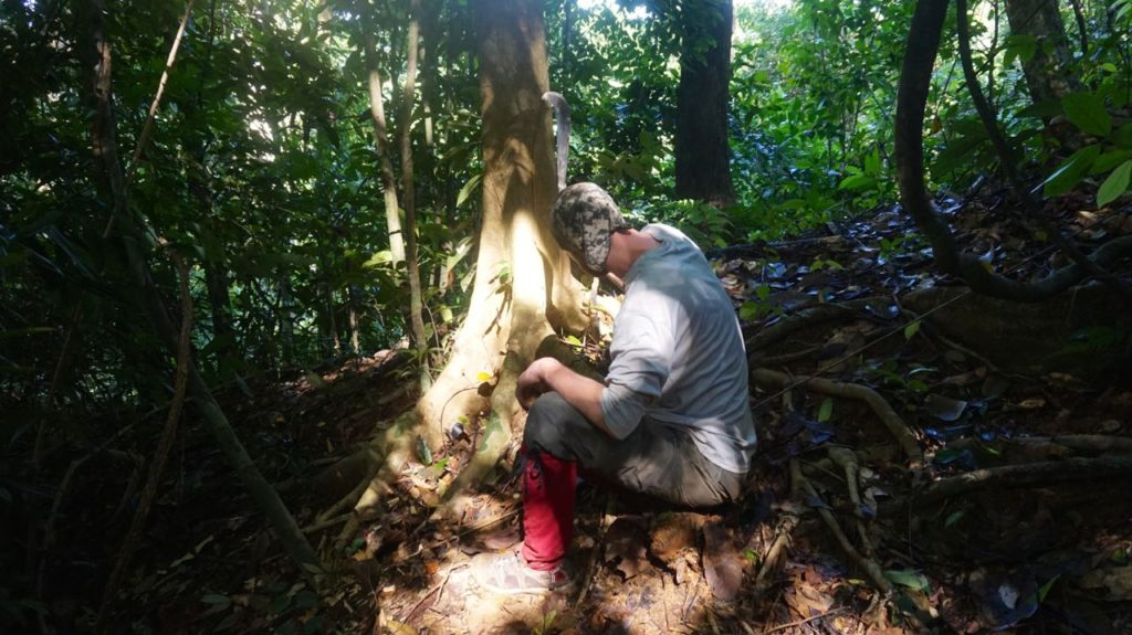 Setting up camera traps in the forests. (Photo courtesy of Andrew Tilker)