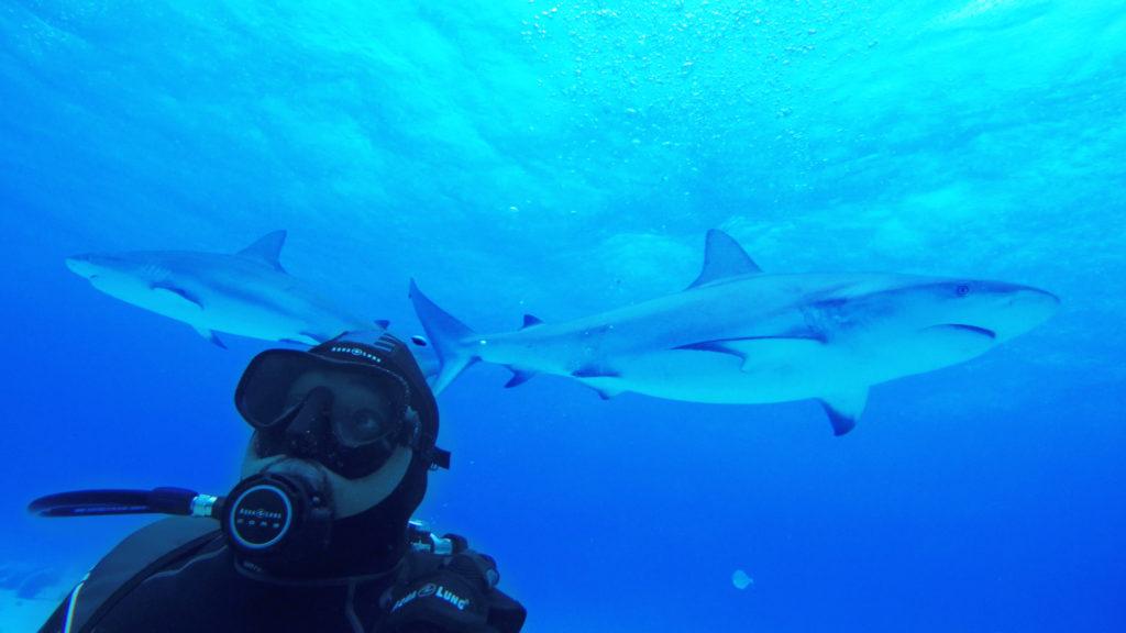 Daymond-John-Shark-Week