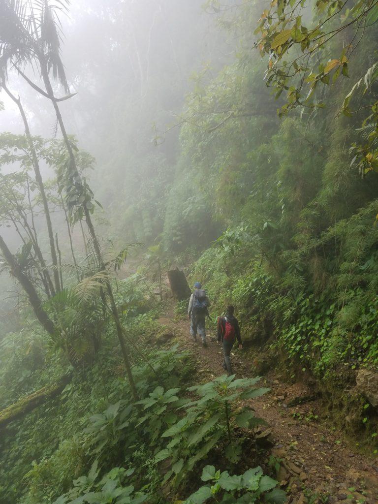 Tom and Nikki hike the trails in the Sierra Nevada de Santa Marta while on amphibian surveys. (Photo by Dr. Jan Schipper)