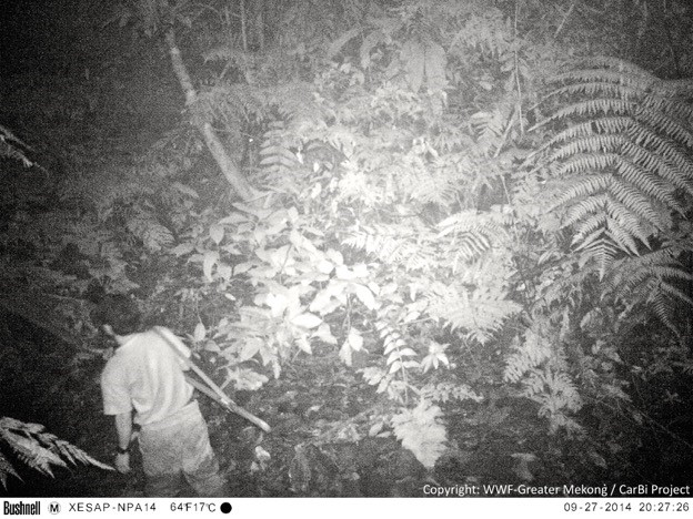A hunter caught on camera trap. (Photo courtesy of WWF-Greater Mekong/CarBi Project)