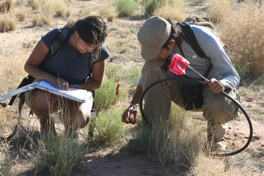Conducting fieldwork. Photo courtesy Rosalinda Palomo-Ramos.
