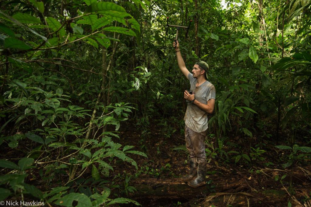 GWC Nicaragua Programs Director Chris Jordan uses radio telemetry in search of collard Baird's Tapirs. (Photo by Nick Hawkins)