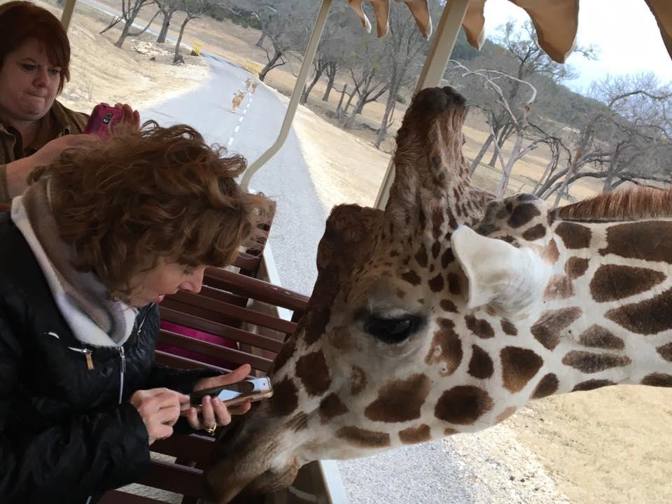 Laura-and-Giraffe-at-Fossil-Rim-Wildlife-Center