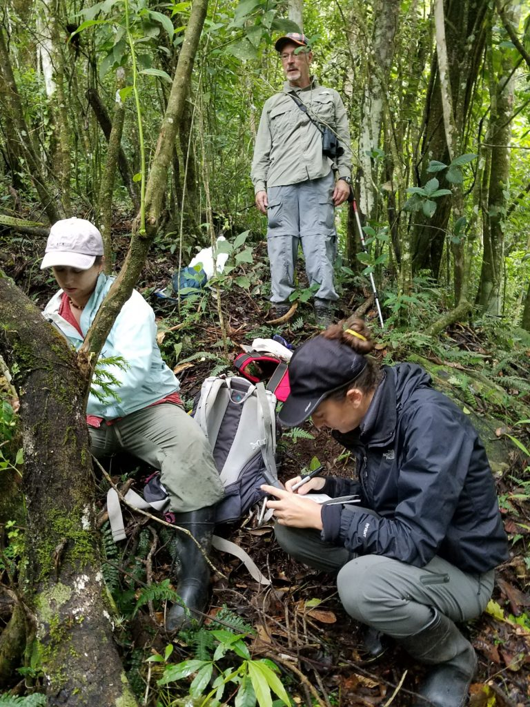 Dr. Iara Lacher, Smithsonian; Dr. Tom Lacher, Texas A&M; and Nikki Roach, Texas A&M and GWC associate conservation scientist setting camera traps for the Santa Marta Toro. (Photo by Dr. Jan Schipper)