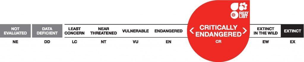 IUCN Red List threat categories.