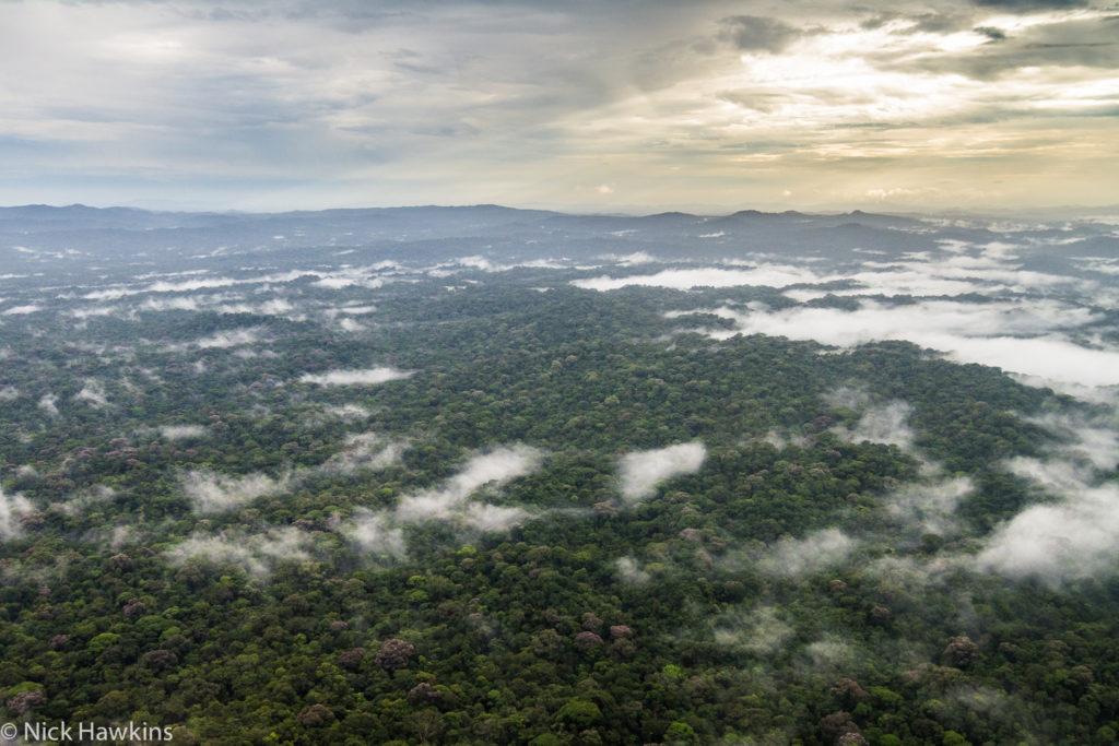 Ariel view of Indio Maiz, Nicaragua. (Photo by Nick Hawkins)