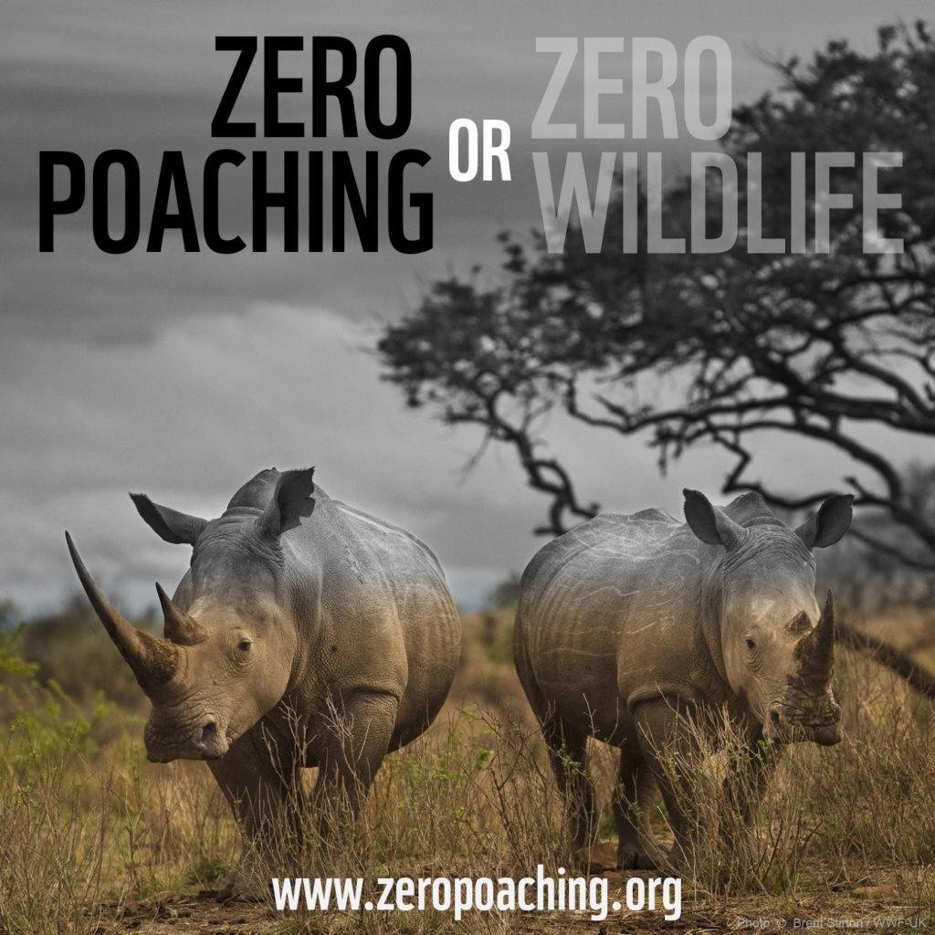 zero poaching or zero wildlife