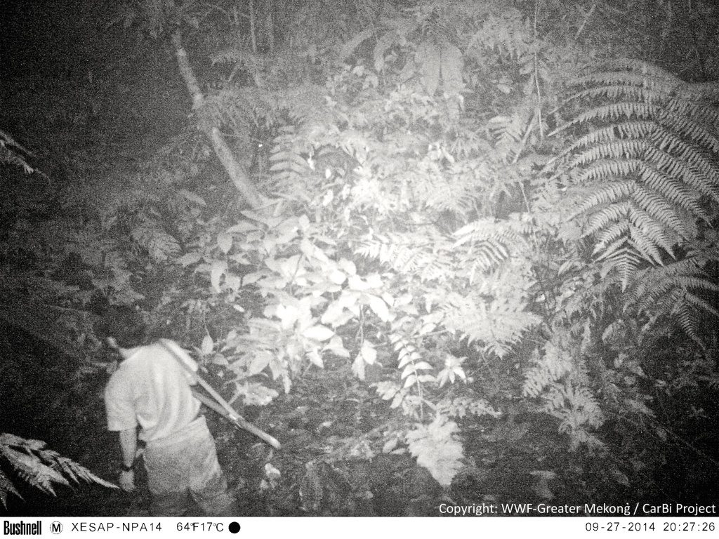 Camera traps not only provide valuable images of elusive species, but sometimes capture the poachers threatening those species.