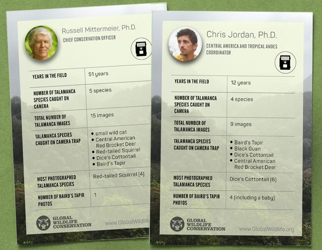 trading-cards-russell-mittermeier-chris-jordan