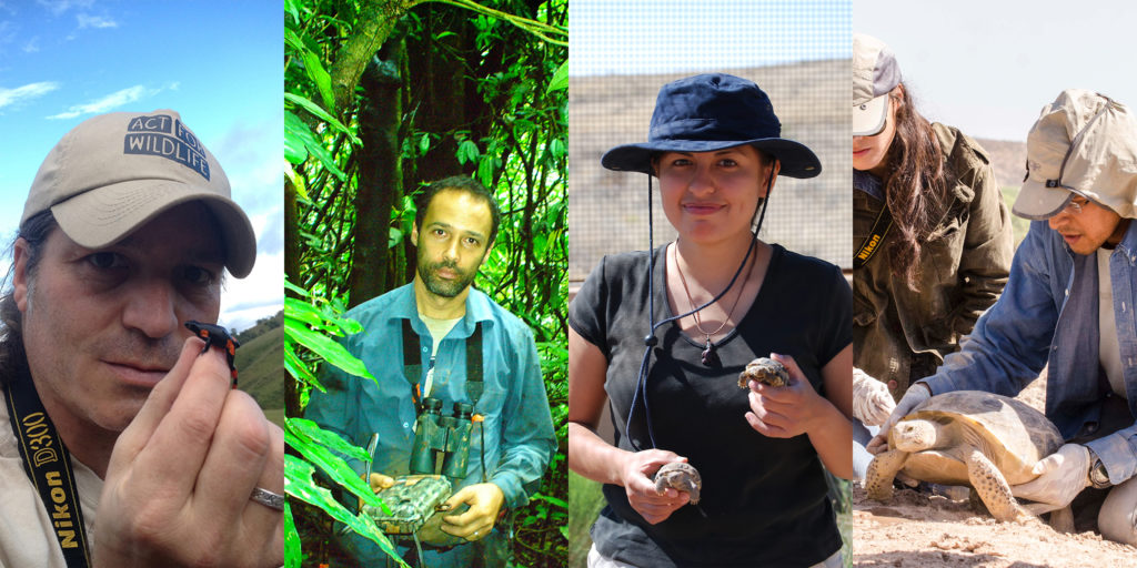 2018 Sabin Conservation Prizes Recognize Vital Work in Amphibian, Turtle and Primate Conservation