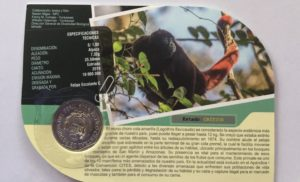 Yellow-tailed Woolly Monkey coin back in Peru