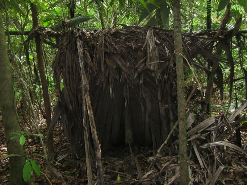 Hunting camp discovered as a part of ranger patrols