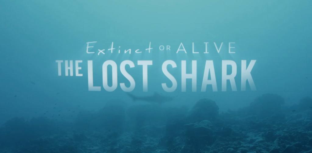 Shark Week Extinct or Alive, rediscovering the lost Pondicherry Shark