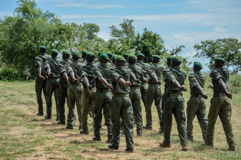 Park rangers at a parade in Zimbabwe.