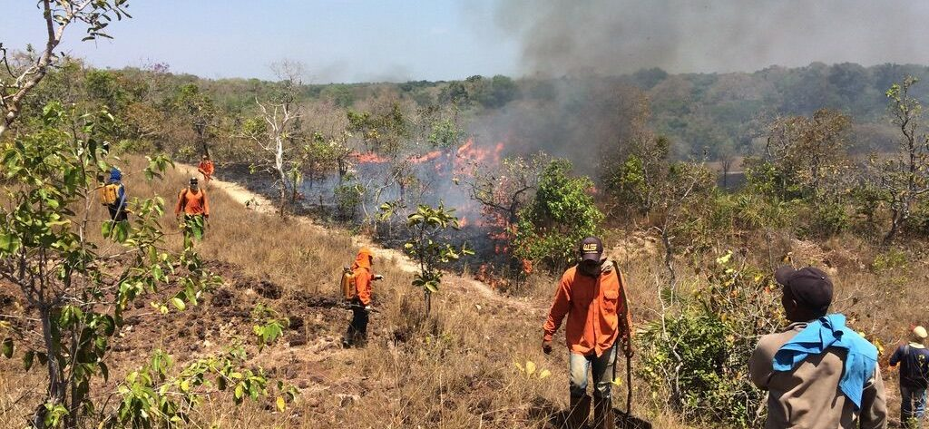 The Instituto Araguaia team putting out the fires.
