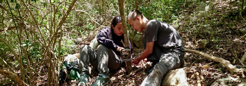 Setting camera traps in Vietnam looking for Silver-backed Chevrotain