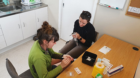 DOC staff puts bands on the first Kakī chicks
