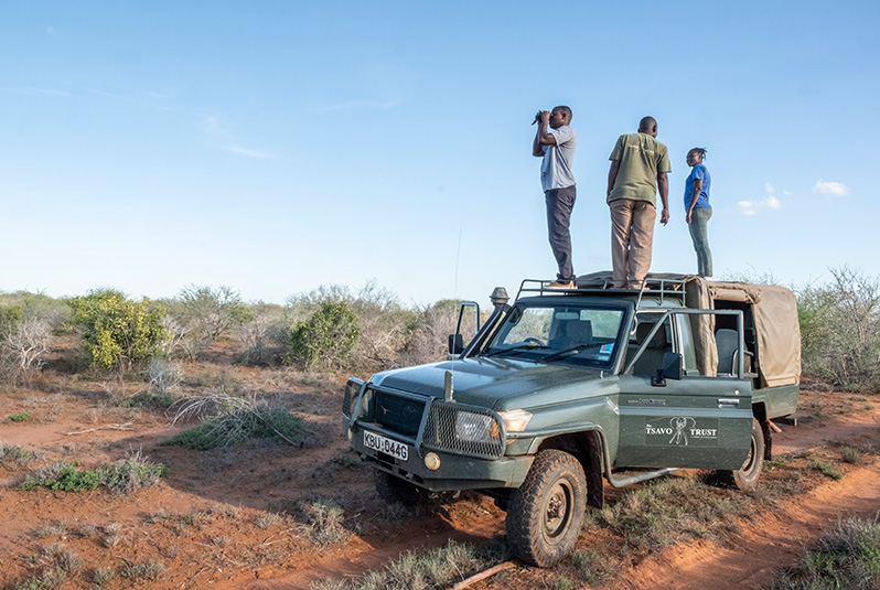 Rangers from Tsavo Trust have a keen eye for Hirola and other species that can be tricky to spot