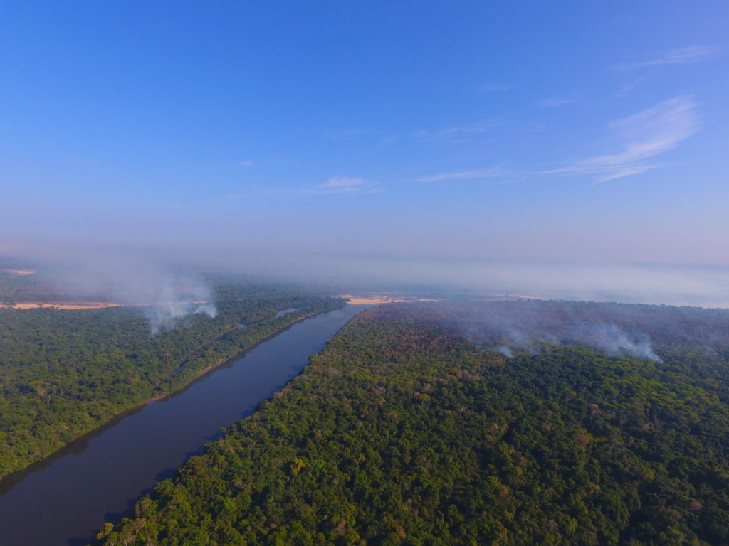 Ariel photo of forest with clouds of smoke rising above the canopy where fires are burning.