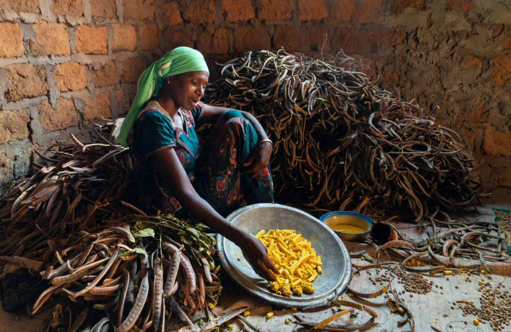 A woman sitting on the floor surrounded by crops to husk.